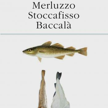 Merluzzo Stoccafisso Baccalà