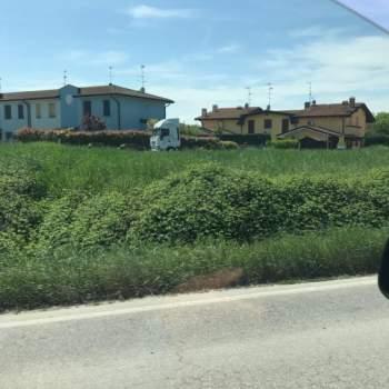 Terreno in vendita a Suzzara (MN)