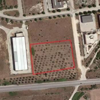 Terreno in vendita a Manfredonia (FG)