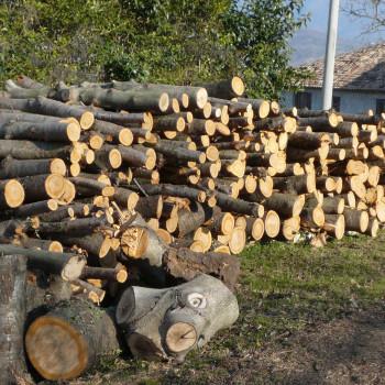 Vendo legna ciliegio pezzi da 1,5/2m da ritirare sul posto. 9€ al quintale