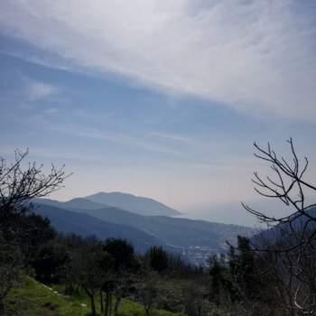Terreno in vendita a Avegno (GE)