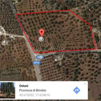 Terreno in vendita a Ostuni (BR)