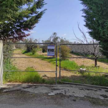 Terreno in vendita a Alezio (LE)