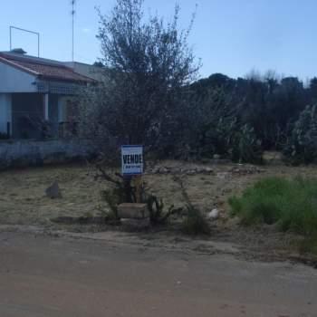 Terreno in vendita a Racale (LE)