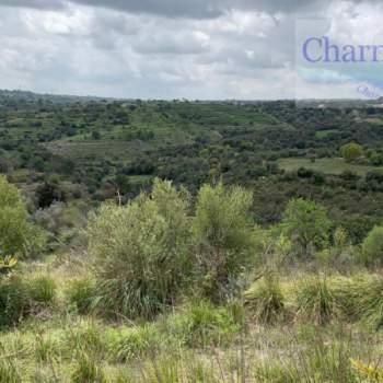 Terreno in vendita a Ragusa (RG)