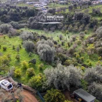 Terreno in vendita a Avola (SR)