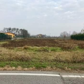Terreno in vendita a Veronella (VR)