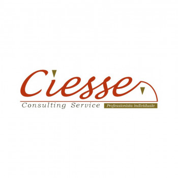 CIESSE Consulting Service